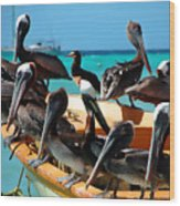 Pelicans On A Boat Wood Print