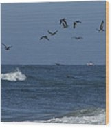 Pelicans Over The Atlantic Wood Print