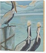 Pelicans Three Wood Print
