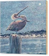 Pelikan At Night Santa Barbara Harbor Wood Print