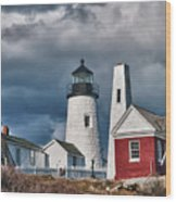 Pemaquid Point Lighthouse 4821 Wood Print