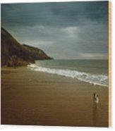 Pembrokeshire Wood Print