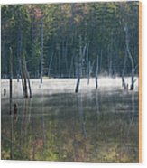 Pemigewasset Wilderness - White Mountains New Hampshire Usa Wood Print