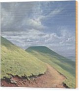 Pen Y Fan Wood Print