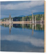Pend Oreille River Pilings Wood Print
