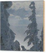 Pend Oreille Thru Fog Wood Print