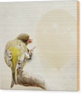 Peng Wood Print