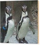 Penguin Duo Wood Print
