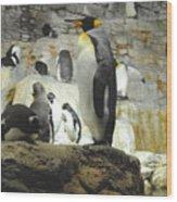 Penguin Wood Print