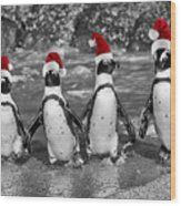 Penguins With Santa Claus Caps Wood Print