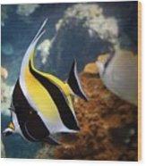 Pennant Coralfish Wood Print