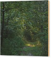 Pennsylvania Path Wood Print