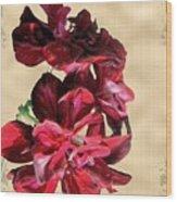 Penny Postcard Wood Print