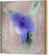Penny Postcard Wildflower Wood Print