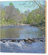Pennypack Creek - Philadelphia Wood Print