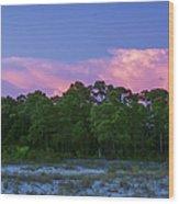 Pensacola Lighthouse Dusk Wood Print
