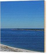 Pensacola Panorama Wood Print