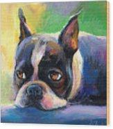Pensive Boston Terrier Dog Painting Wood Print by Svetlana Novikova