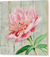 Peony At The Fence Wood Print