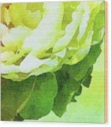 Peony In Bloom Wood Print
