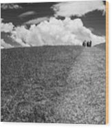 People On The Hill Bw Wood Print