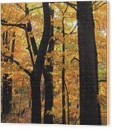 Pequaming Fall Wood Print