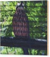 Perched - 4 Wood Print