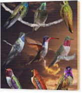 Perched Hummingbird Collage Wood Print