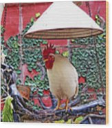 Perched Rooster Wood Print
