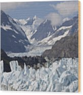 Perfect Day At Margerie Glacier Wood Print
