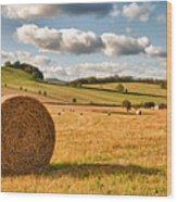 Perfect Harvest Landscape Wood Print by Amanda Elwell