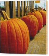 Perfect Row Of Pumpkins Wood Print