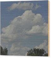 Perfect Weather Wood Print