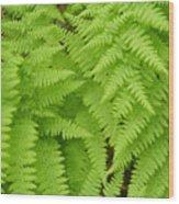 Perfume Of The Woods Wood Print by Jennifer Compton