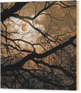 Perigee Moon In The Trees Wood Print