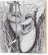 Periuk Kera Wood Print
