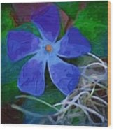 Periwinkle Blue Wood Print