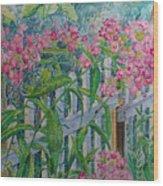 Perky Pink Phlox In A Dahlonega Garden Wood Print