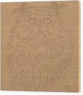 Persian Cat 1 Wood Print