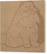 Persian Cat 3 Wood Print