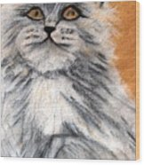 Persian Cat Wood Print