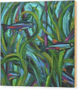 Persistent Fish Betta  Wood Print