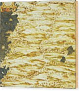 Peru And Ecuador Wood Print