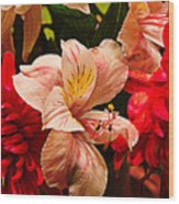 Peruvian Lily Grain Wood Print