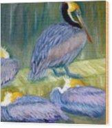 Peruvian Pelicans Two Pastel Wood Print