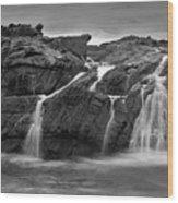 Pescadero Sb 8676 Wood Print