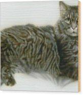 Pet Portrait - Buddy Wood Print