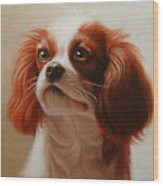 Pet Portrait Of A Cavalier King Charles Spaniel Wood Print
