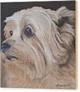 Pet Portrait Painting Commission Cairn Terrier Wood Print