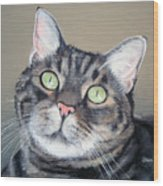 Pet Portrait Painting Commission Tiger Cat Wood Print